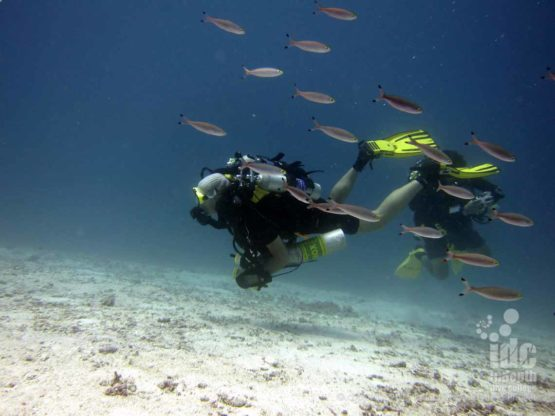 Poseidon Rebreather being used for the PADI Navigation Course by the student diver with Indepth Phuket