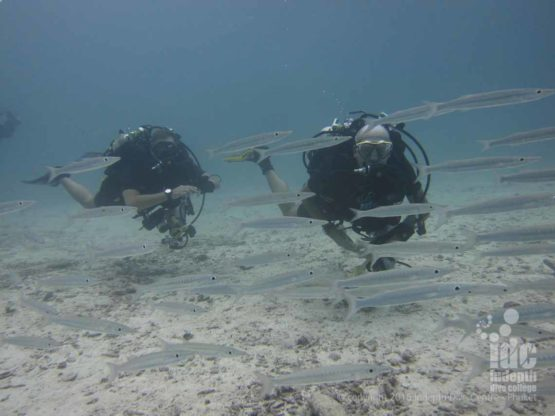 Rebreathers can be dived on all your PADI Master Scuba Diver dives with Indepth on Phuket