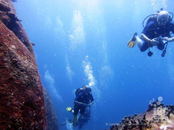 Scuba Diving fun at Boulder City in The Similans with Indepth Dive Centre
