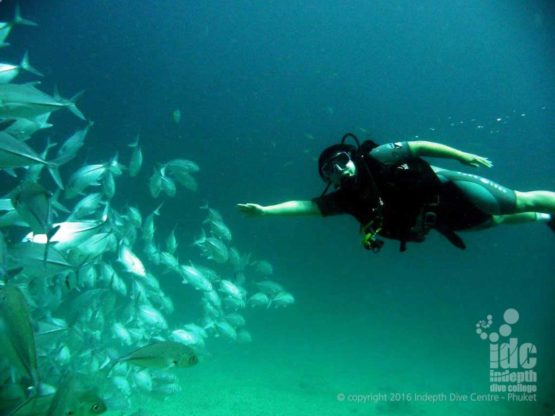 Becoming a PADI diver can transform you into a diving goddess