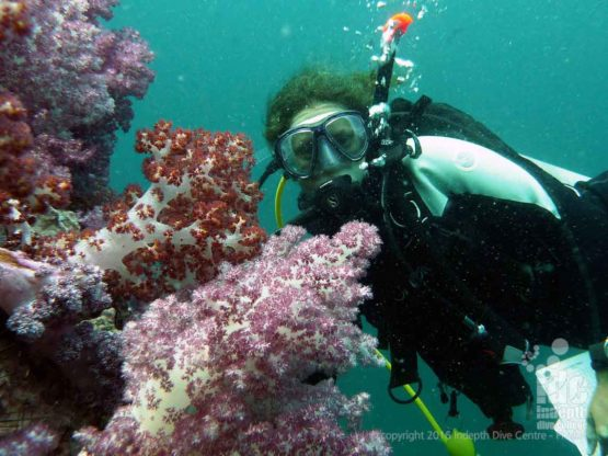 Scuba diving with Soft Corals at Shark Point Phuket
