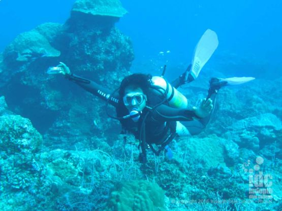 Scuba Diving at Breakfast Bend in The Andaman Sea with Indepth