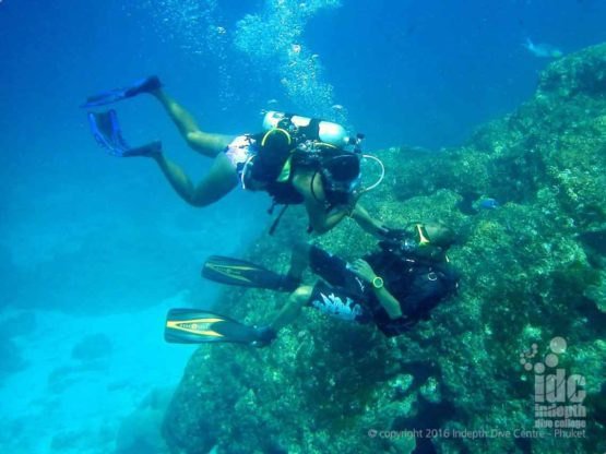 Go Scuba Diving at Siam Bay with Indepth Dive Phuket