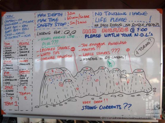 Is that Leopard Shark I spy on that dive map briefing