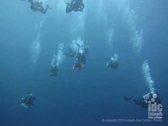 Scuba Divers in The Similans with Indepth Dive Centre