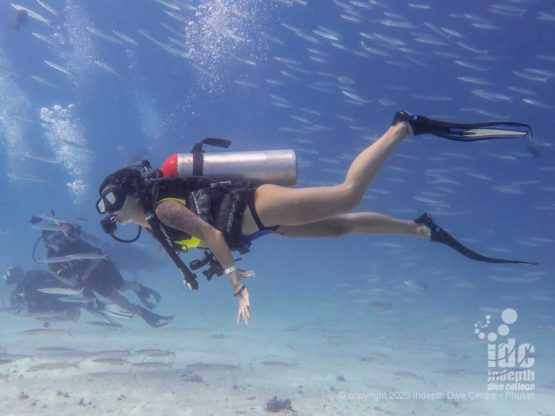 Diving in the warm waters of Tachai Reef - Thailand Dive Sites
