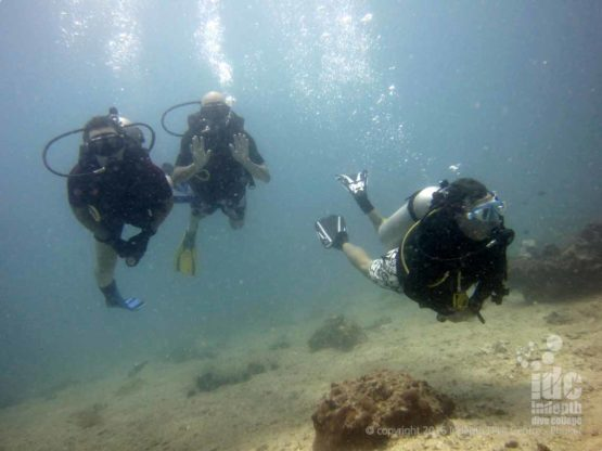 A Try Dive at Kata Beach House Reef with Indepth Phuket
