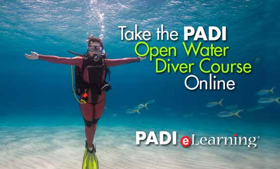 Start your PADI eLearning on-line study today with Indepth Phuket