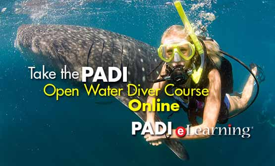 Start your PADI Open Water Course today eLearning with Indepth Phuket