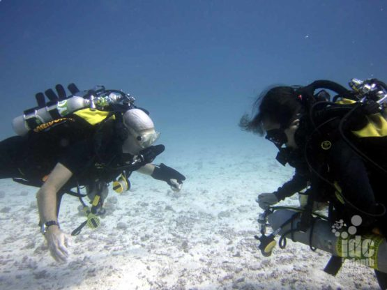 PADI Poseidon Rebreather Course removing the off-board bail out