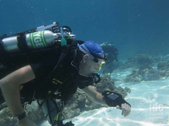 Similan Islands Poseidon Reberather Diving with Indepth