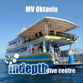 Join Indepth Dive Centre for a superb Similan Liveaboard Trip aboard MV Oktavia Liveaboard