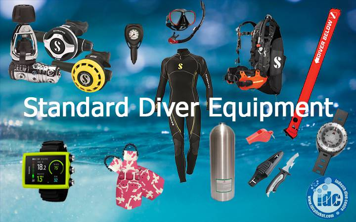 What equipment do you need to go scuba diving?