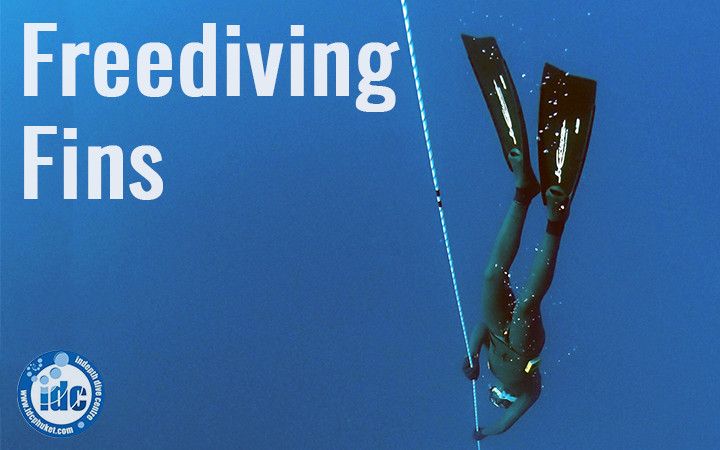 Freediving Fins