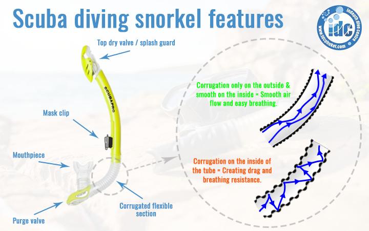 Scuba diving snorkel features