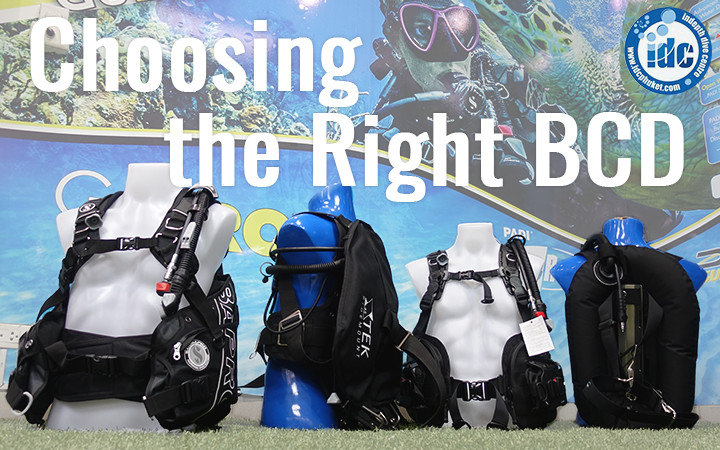Choosing the Right BCD and Low Pressure Inflator